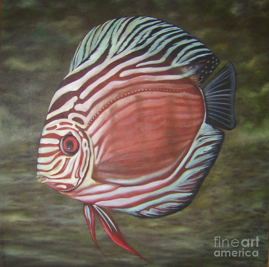 discus fish michael biernaski